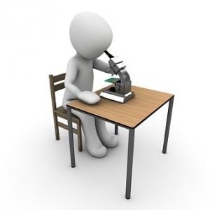 3-1 Internationale Forschung - Studien und Berichte